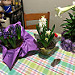 Easter flowers! Last minute, but just what I wanted. And a lily too!  ;)
